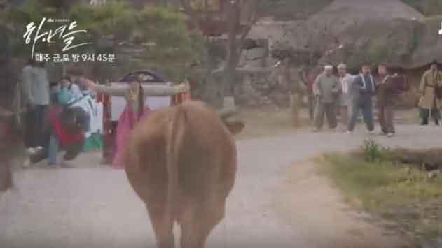 《イニョプの道》1話-あらすじ暴れ牛が向かってきて